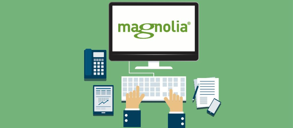 Magnolia CMS as a component of the digital enterprise