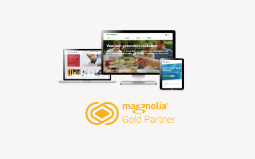 Formica awarded Gold Partner status by Magnolia CMS.  Thumbnail